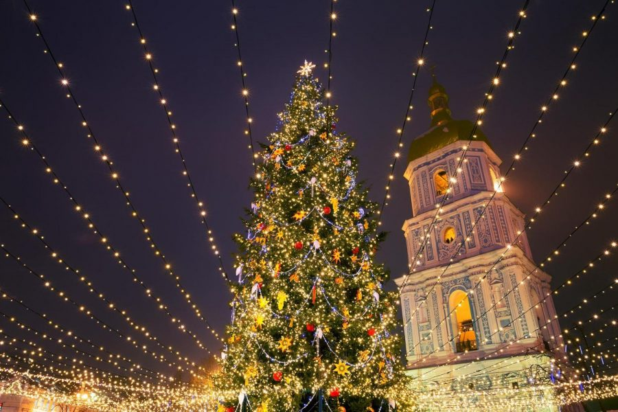 Why are Christmas trees a holiday tradition?
